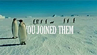 March of The Penguins II Spoof